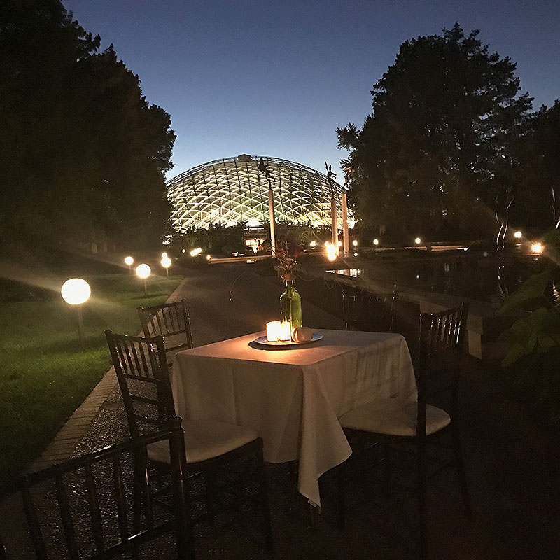 St. Louis Botanical Gardens, wedding, wedding buffet, reception, table